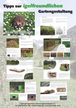 Wunderbar Gartengestaltung Beispiel Tipps Und Bilder Fotos ...